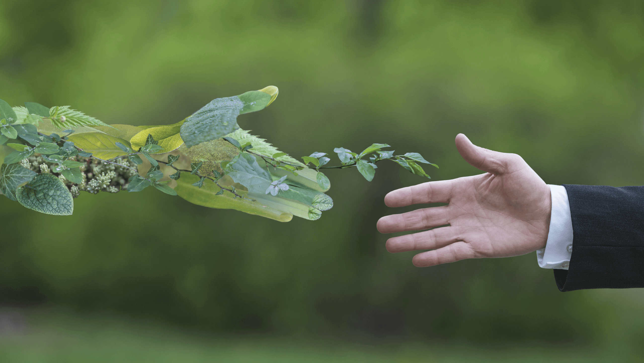 A man extending his hand for a handshake with 'nature'